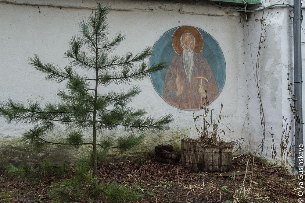 pskov-2013-s-7266